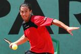 th_34176_fullj_getty-tennis-fra-roland-garros-hanescu-canas_8_28_42_am_122_538lo.jpg